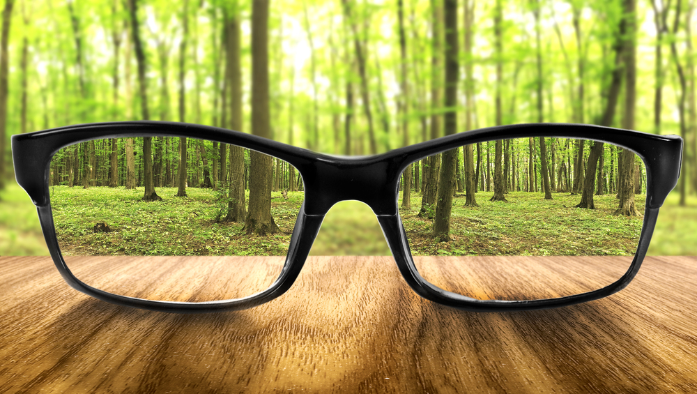 Eyeglasses and clarity forest Jan 2018.jpg